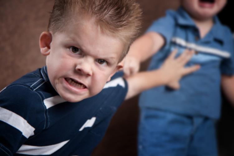 Angry-Boys